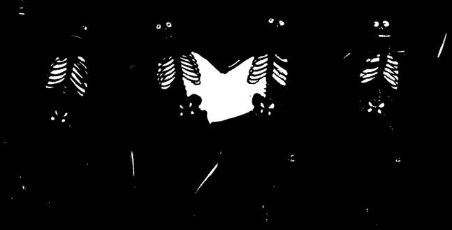 skeletons-32459_960_720.png