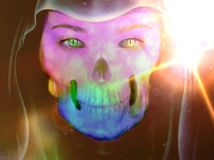 skull-657477_960_720
